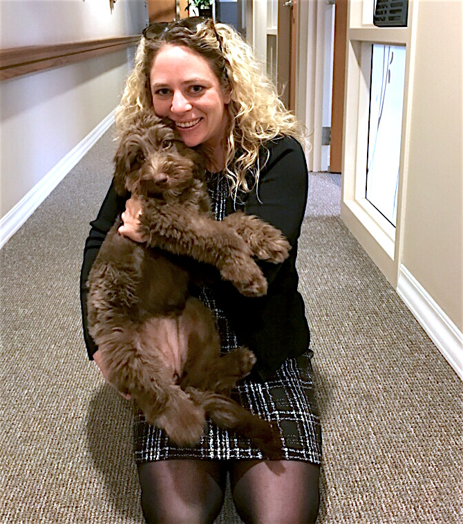 aussiedoodle_therapy_dog