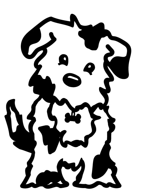 Natalie & Kris's Awesome AussieDoodles in Texas - AwesomeDoodle